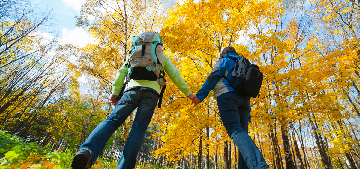 Couple hiking in yellow trees
